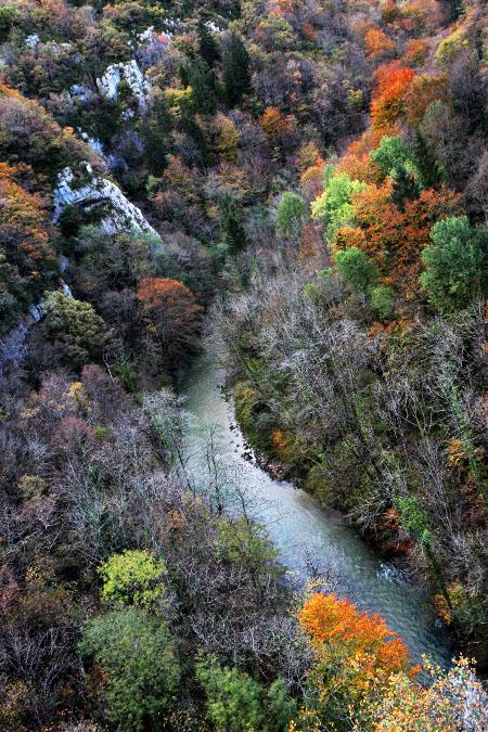 autumn jura-3