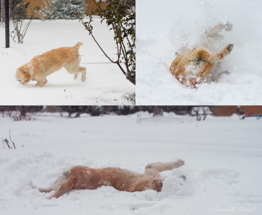 dusha-snow-4