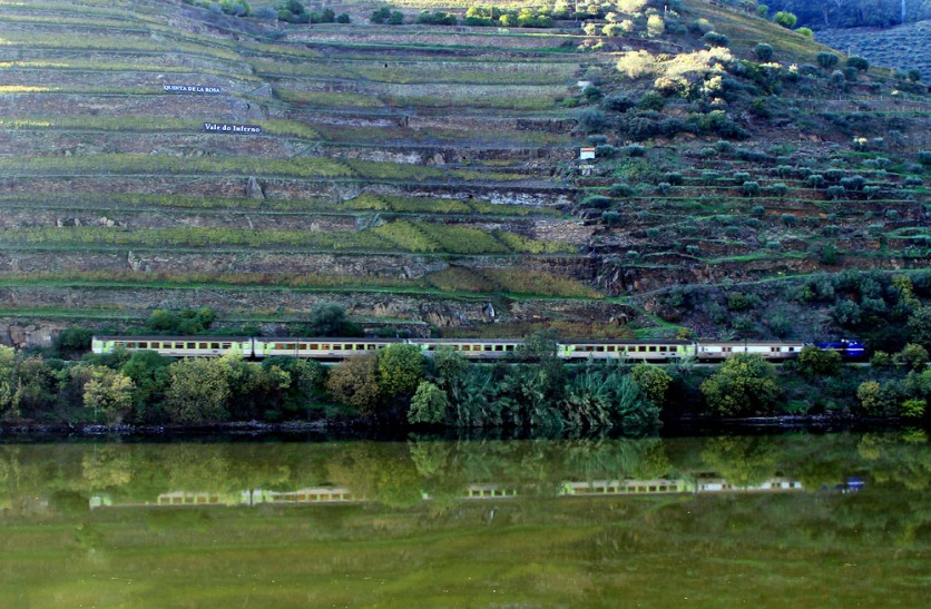 douro-train