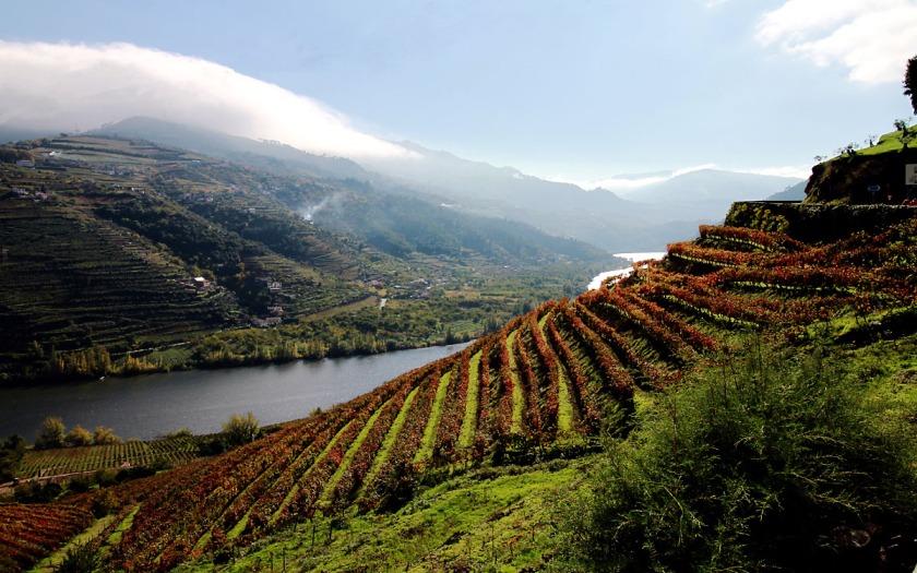 douro-valley-1