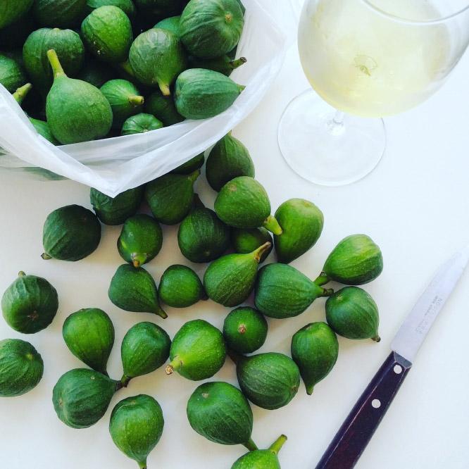 unripe fig