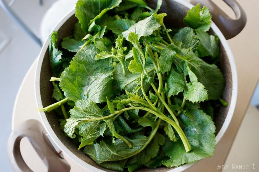 mustard green fermented